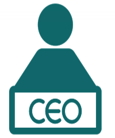 Learn how to be a CEO, Advantages and disadvantages of ceo