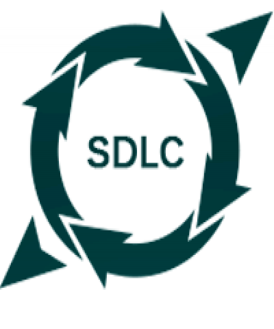 An essay on varied SDLC models and their features.