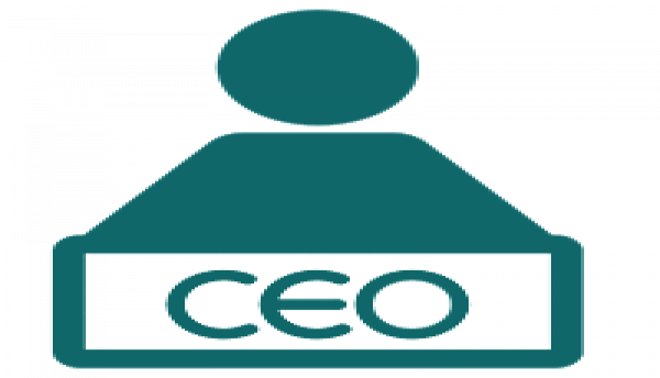 Learn how to be a CEO and what are the advantages and disadvantages of being one