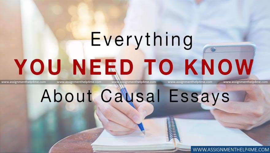 Everything You Need to Know About Causal Essays