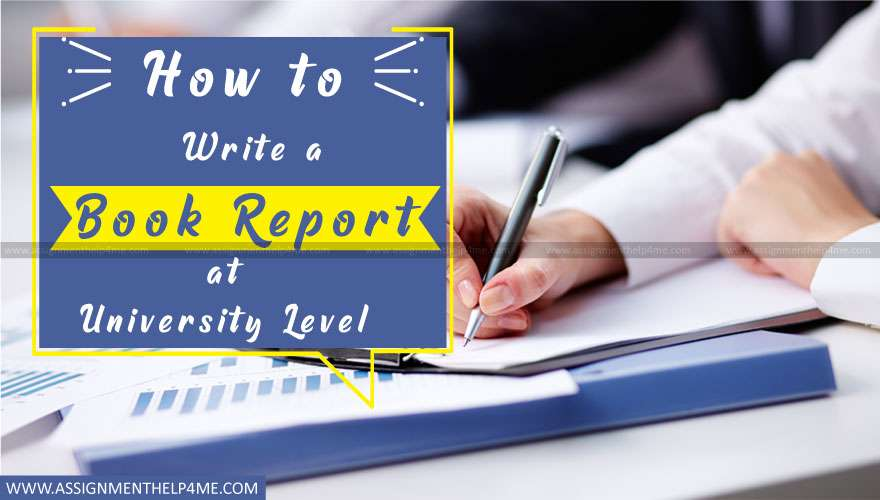 How to Write a Book Report at University Level